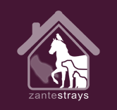 Zante Strays