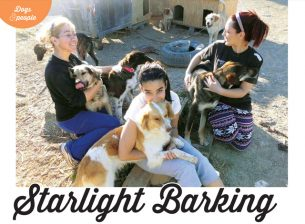 Dogs Monthly feature
